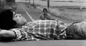 Gus Van Sant, L'homme aux mille visages
