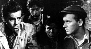 """Roman Polanski : """"Tout le cinéma polonais est parti de là."""""""