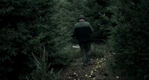 Die Vögelein Schweigen Im Walde