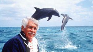 L'Homme dauphin : sur les traces de Jacques Mayol