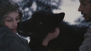 La jeune fille et les loups