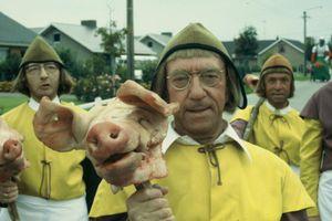 De geschiedenis van het varken (in ons)