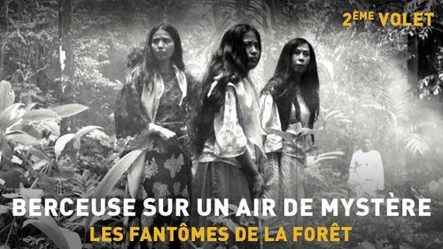 Berceuse sur un air de mystère - Partie 2 : Les fantômes de la forêt